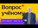 Вопрос учёному: Александр Каплан — про мозг (часть 1)
