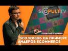 SEO жизнь на примере лидеров ecommerce «электроника и техника». Станислав Поломарь